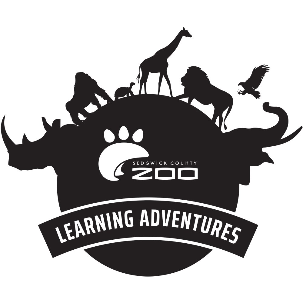 learning-adventure-FINAL-print
